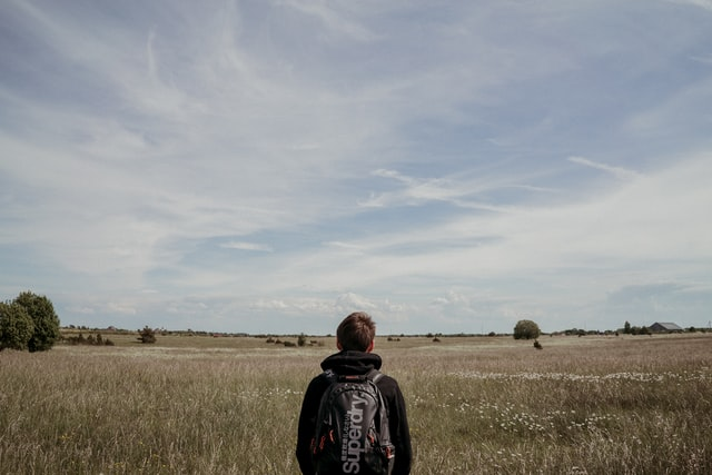 a man looking at a field